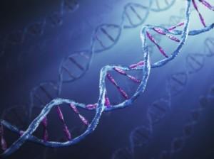 <!--:it-->Il ruolo del Dna-spazzatura nello sviluppo di tumori <!--:-->