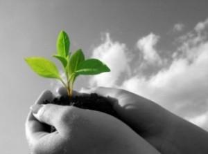 <!--:it-->L&#8217;ecologia profonda: la necessità di costruire una consapevolezza ecologica <!--:-->