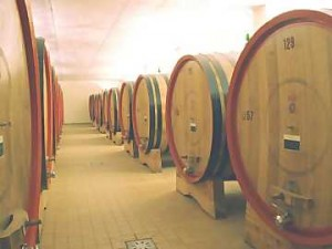 <!--:it-->Vandali in cantina<!--:--><!--:en-->Vandals in the cellar<!--:--><!--:fr-->Vandales dans la cave<!--:-->
