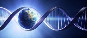 <!--:it-->Il DNA conserva le esperienze<!--:--><!--:en-->DNA stores the experiences<!--:--><!--:fr-->L'ADN il conserve les expériences <!--:-->