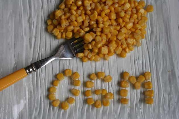 OGM  questa realta'
