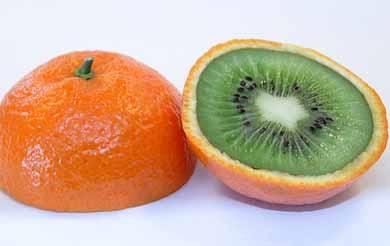 arancia-ogm