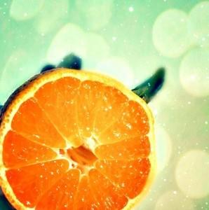 <!--:it-->Come ricavare biocarburanti dalle arance<!--:--><!--:en-->How to make biofuels from oranges<!--:--><!--:fr-->Comment fabriquer des biocarburants à partir d'oranges<!--:-->
