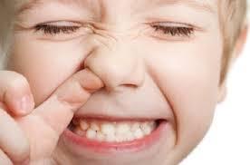 <!--:it-->Mangiarsi le caccole, un toccasana per il sistema immunitario<!--:--><!--:en-->Biting your boogers, a cure immune system<!--:--><!--:fr-->Mordre vos crottes de nez, un système immunitaire de guérir<!--:-->