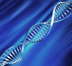 <!--:it-->I geni ritardatari possibili cause di tumori<!--:-->