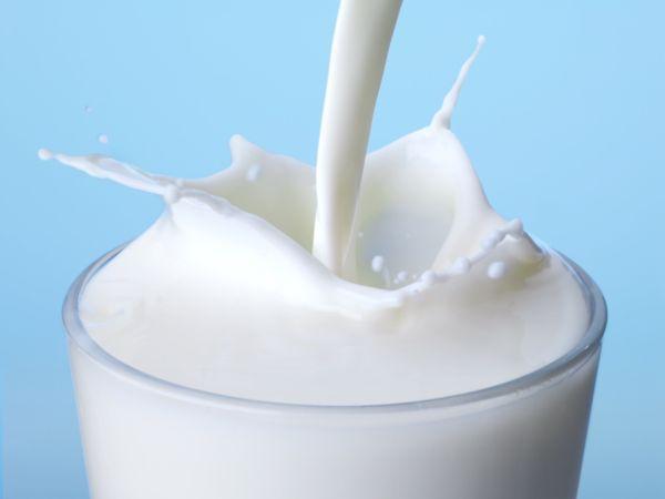 latte polvere