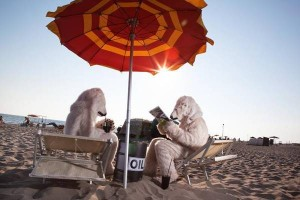 <!--:it-->Ostia due orsi polari in 'vacanza' per greenpeace<!--:--><!--:en-->Ostia two polar bears in 'holiday' for greenpeace<!--:--><!--:fr-->Ostia deux ours polaires en «vacances» pour Greenpeace<!--:-->