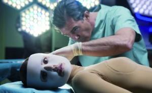 <!--:it-->Ricreare in provetta la malattia<!--:--><!--:en-->Remaking the disease in a test tube<!--:--><!--:fr-->Remaking the disease in a test tube<!--:-->