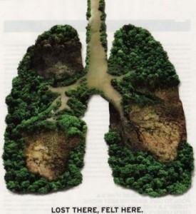 <!--:it-->22 gesti per Salvare il tuo pianeta<!--:-->
