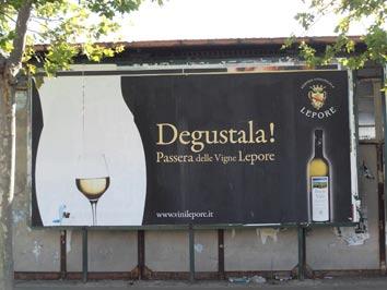 vigne-lepore